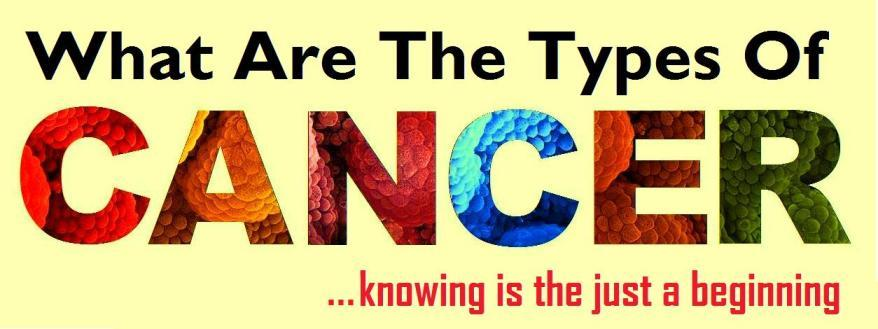 What Are The Types Of Cancer