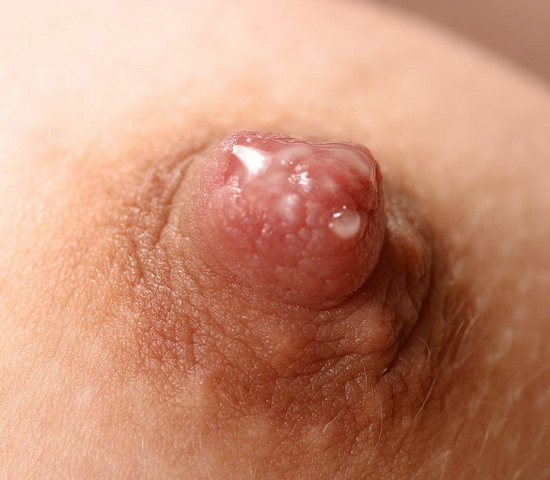 freckled, painful-anal-sex, home, doggy, beauty