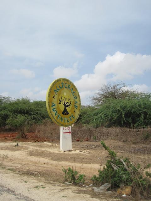 IMG_3301 ▷ La Reserva de Bandia y Accro Baobab Adventures