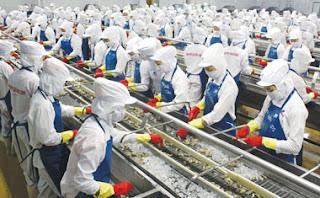 Tuyển 200 nam, nữ đi xuất khẩu lao động Nhật Bản