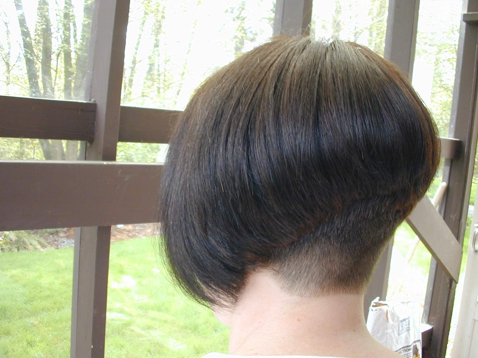 Back view of stacked bob haircut - Short Angled Bob Hairstyles Back View