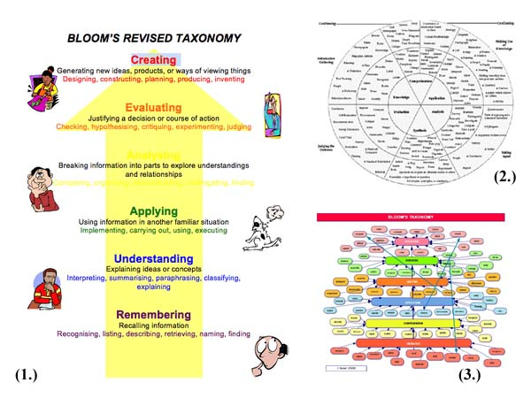 blooms taxonomy 2 essay The teacher can develop activities at each level of bloom's taxonomy to involve   level ii: comprehension (understanding/making connections)  essay flow  charts jingle journal entry obviously it takes a great deal of time and effort on the .