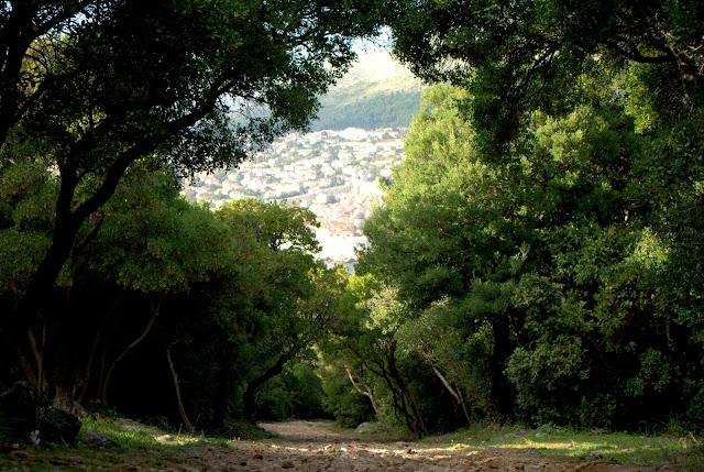 Вид на Дубровник с о-ва Локрум