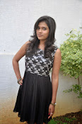 Model Bhargavi Photos at Pochampally Ikat art mela launch-thumbnail-12