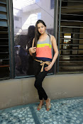 Abha Singhal latest photos at Dil Diwana press meet-thumbnail-15