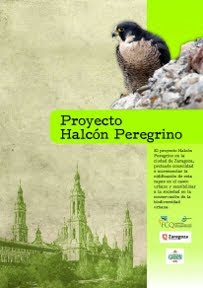 Pdf. del Proyecto