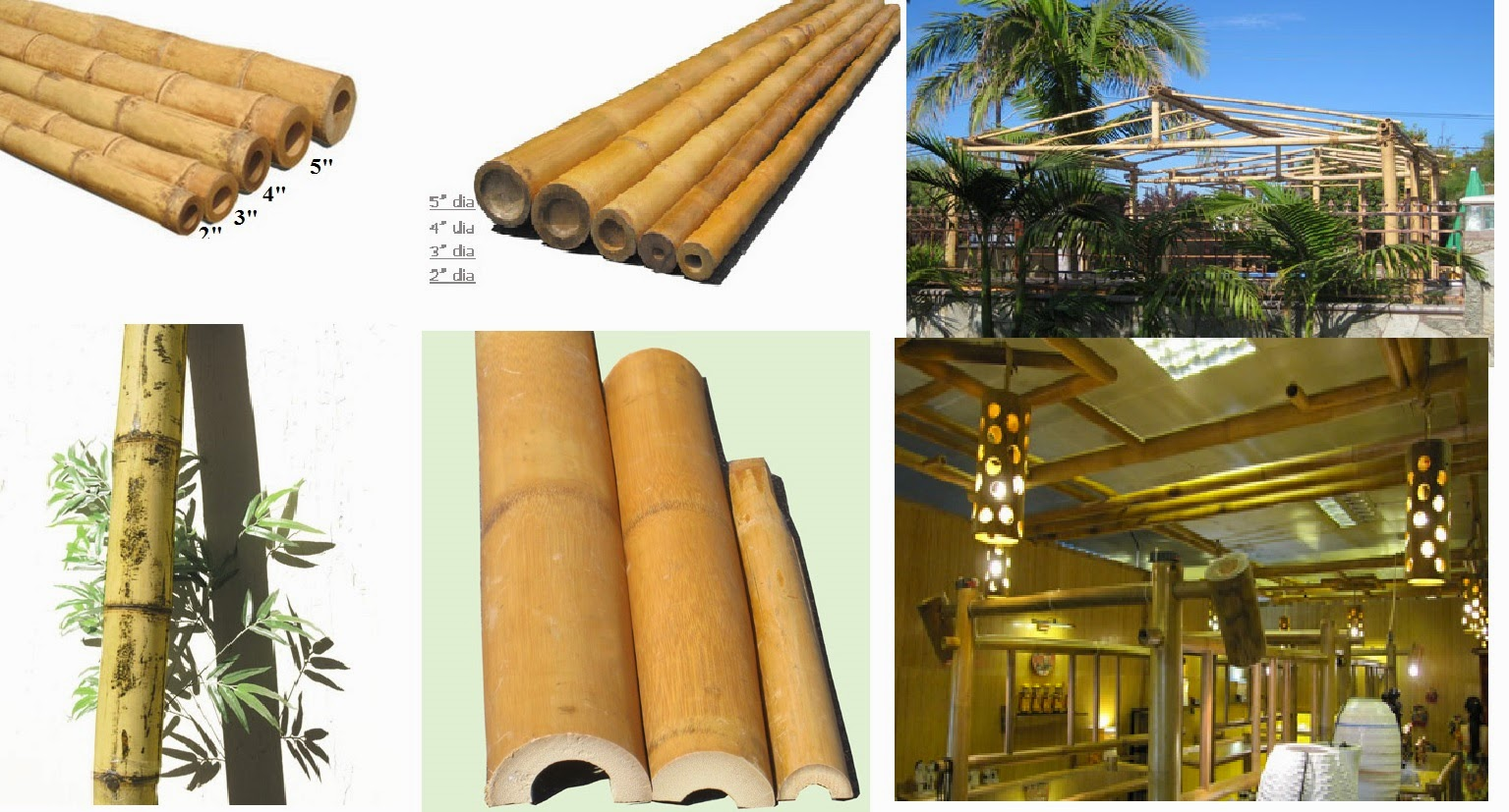 best bamboo cane/ pole /stake all decor ideas for fences,custom