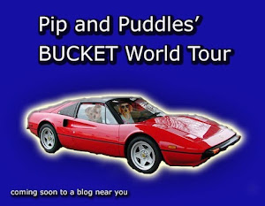 Pip&#39;s Bucket World Tour