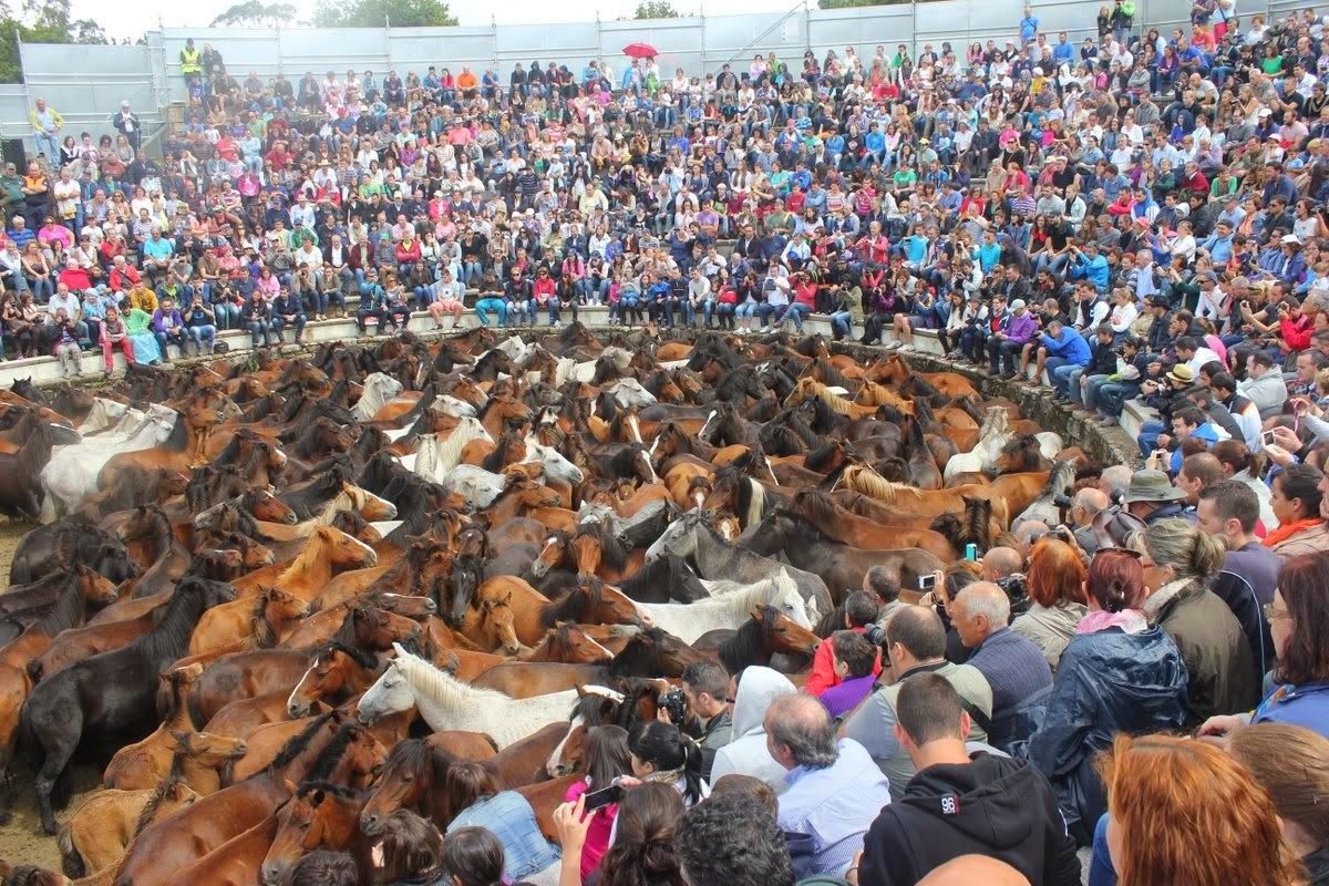 El Curro de Sabucedo (foto: Alberto Ribas)