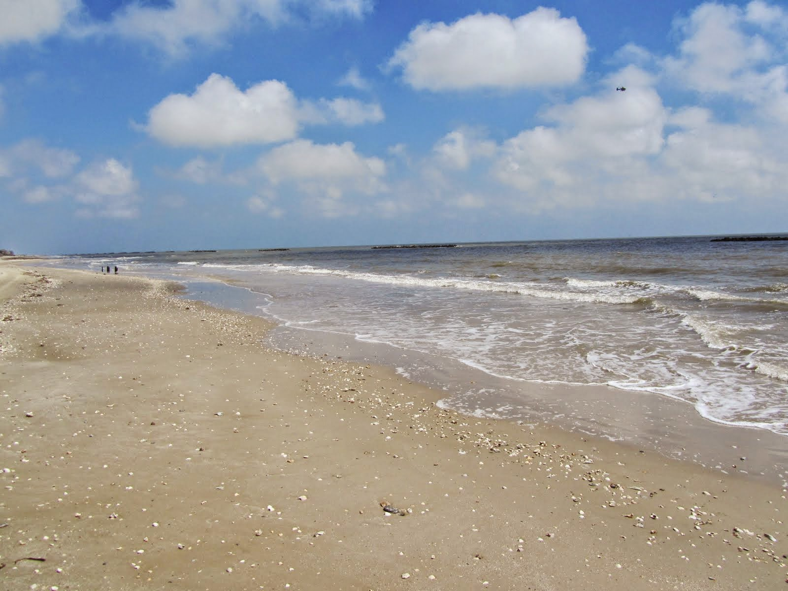 12 Little Known Beaches in Arkansas - onlyinyourstate.com