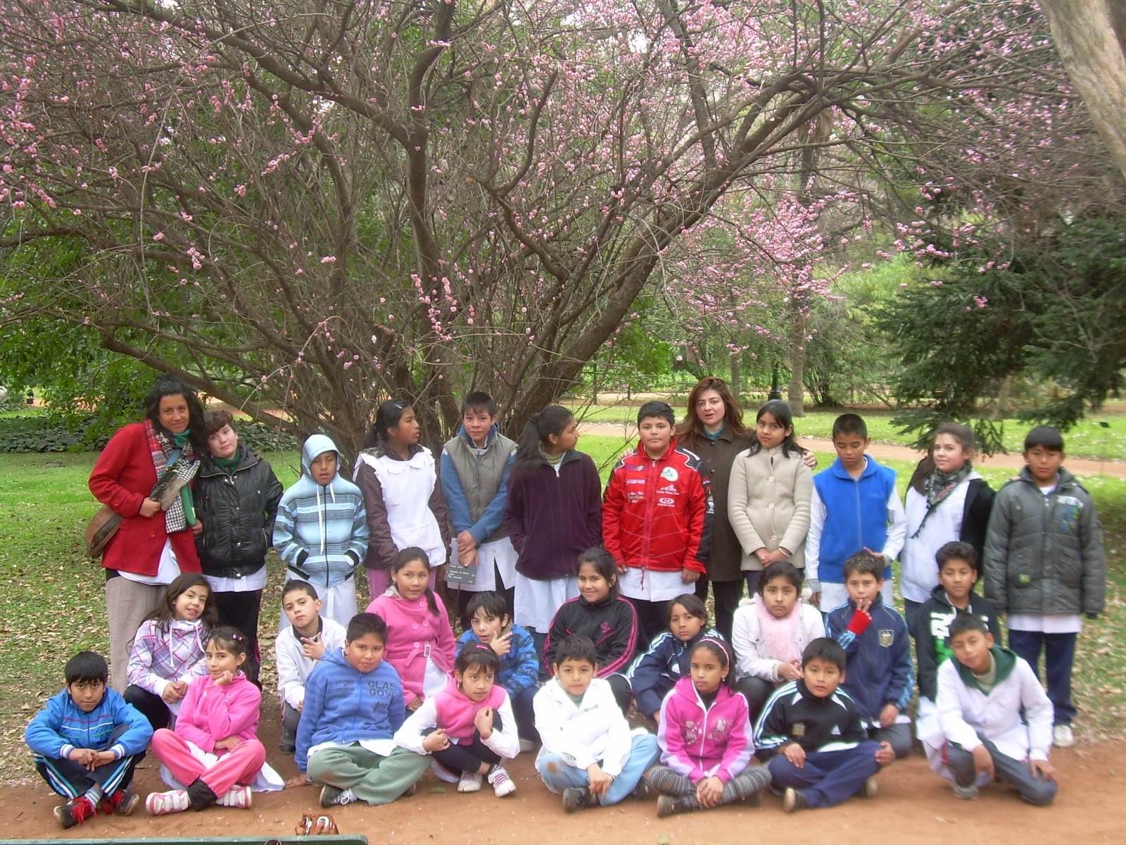 Benjam n zorrilla jard n botanico y 5 a for Informacion sobre el jardin botanico