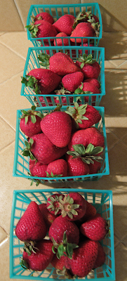 Four baskets of Sorted Strawberries