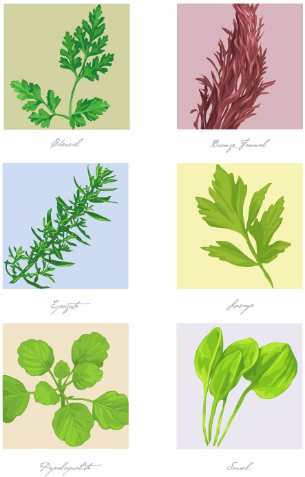 illustration of herbs