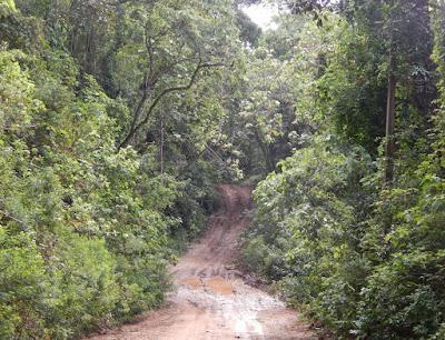Entre uma atração e outra, Monte Verde possui estradas desafiadoras para quem está acostumado somente com vias pavimentadas.