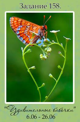 """+++""""Удивительные бабочки"""" до 26/06"""
