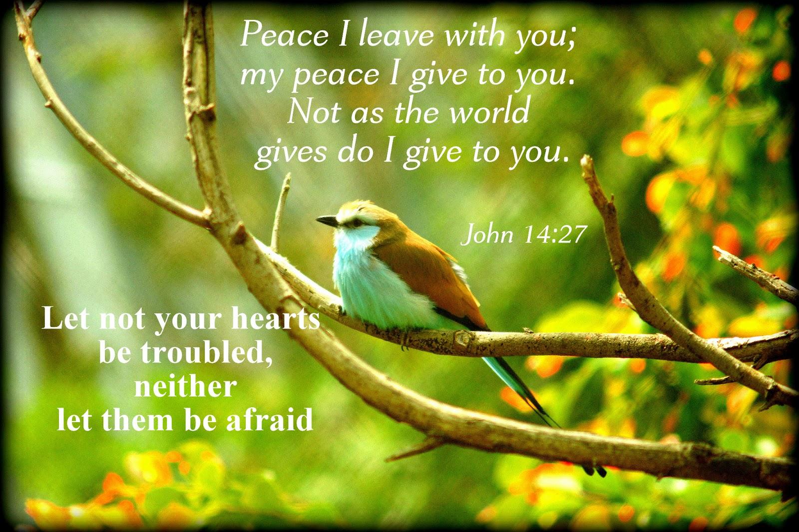 Peace+I+leave+you.jpg