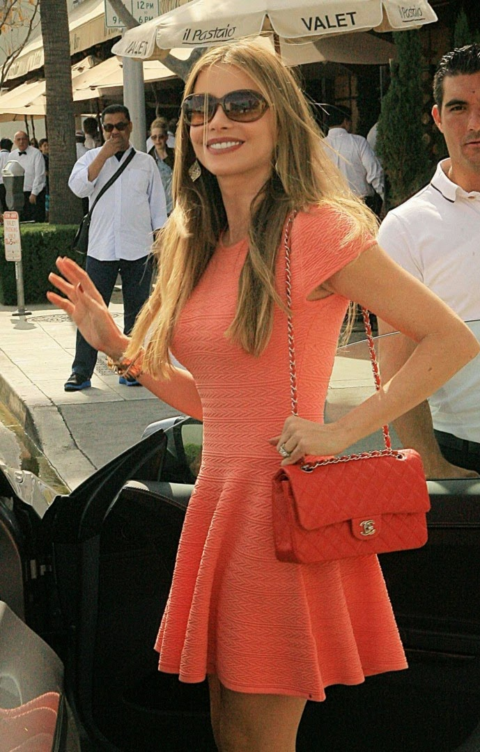 Sofia Vergara mini dress in Beverly Hills