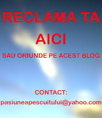 RECLAMA PE ACEST BLOG