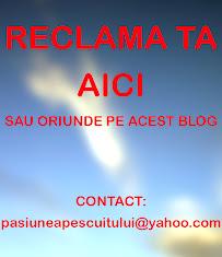 RECLAMA PE ACEST BLOG
