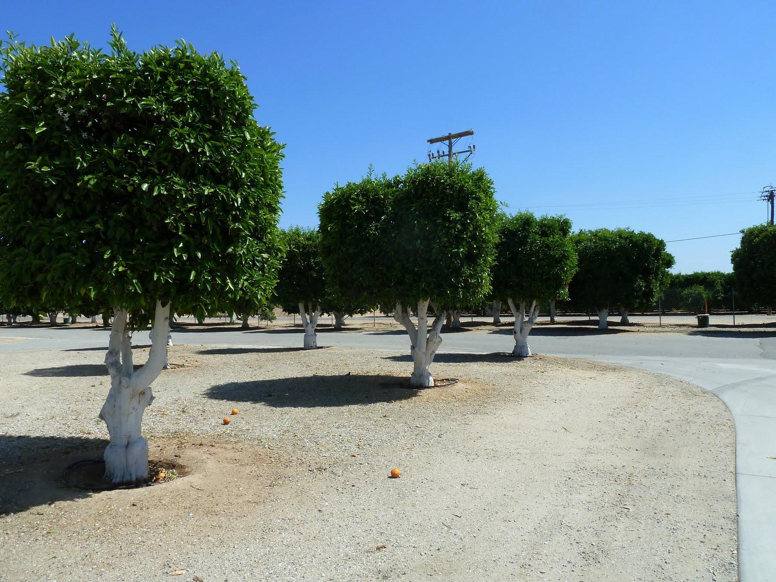 Where S Eldo 04 01 2011 05 01 2011