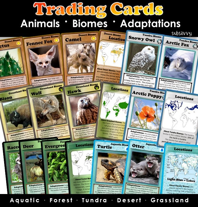 http://www.teacherspayteachers.com/Product/Biomes-Trading-Cards-1328020