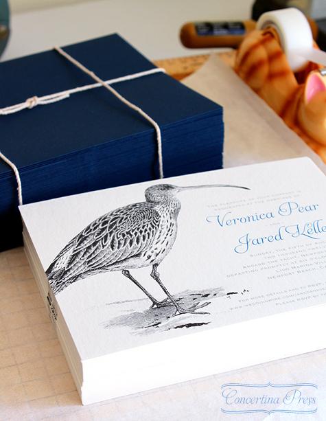 Curlew Wedding Invitation - Concertina Press