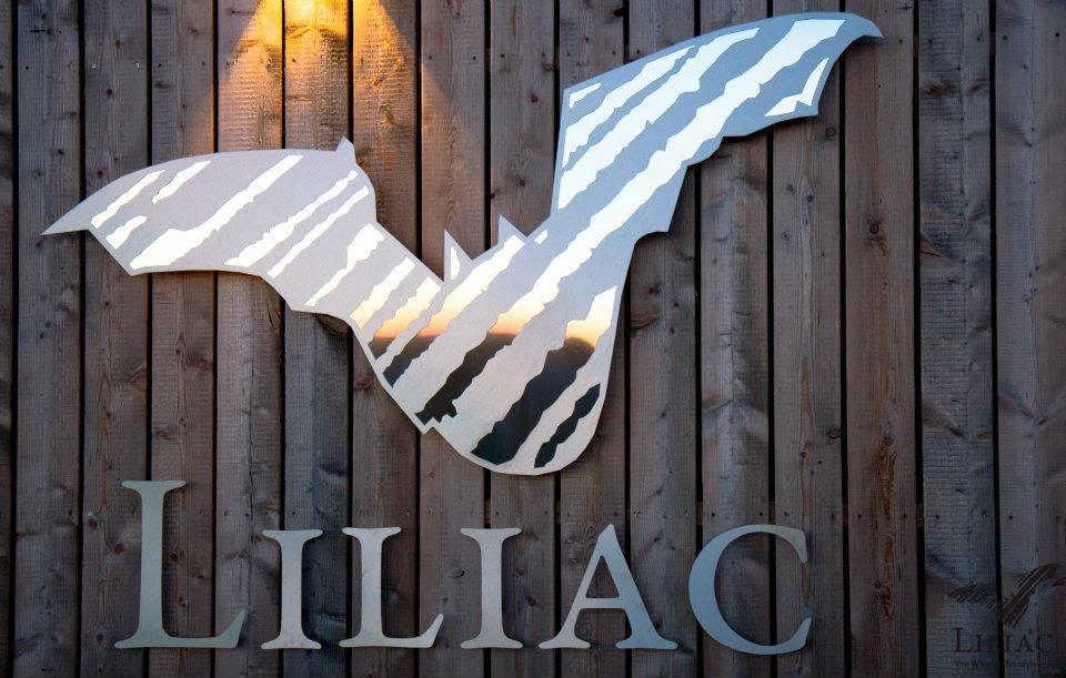 Liliac - The Wine of Transylvania