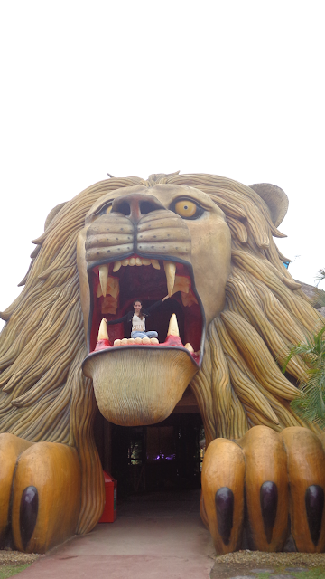 Beto Carrero World, beto carrero, passaporte aniversariante, Zoológico, Mundo Animal, casa das girafas, Mundo Mágico das Aves, Trenzinho Vila Esperança, Penha, Santa Catarina, parque de diversão, dicas beto carrero, aeroporto navegantes, Navegantes