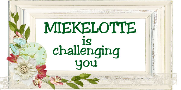 MIEKELOTTE IS CHALLENGING YOU