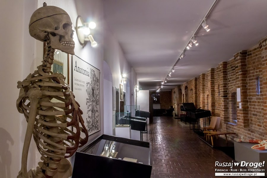 Nieszablonowa wystawa w Szpitalu Św. Ducha we Fromborku