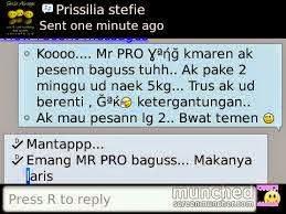 Mr. PRO penambah berat badan