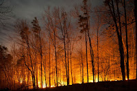 Wildfire (Credit: Shutterstock) Click to Enlarge.