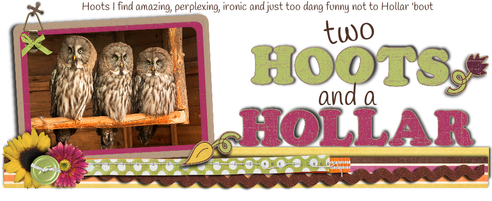 Two Hoots & a Hollar