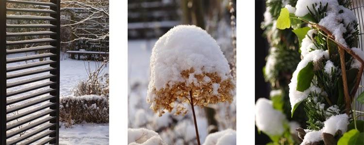 Haven byder på oplevelser også om vinteren