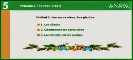 http://www.edistribucion.es/anayaeducacion/pro/8405112/datos/05rdi/ud01/unidad01.htm