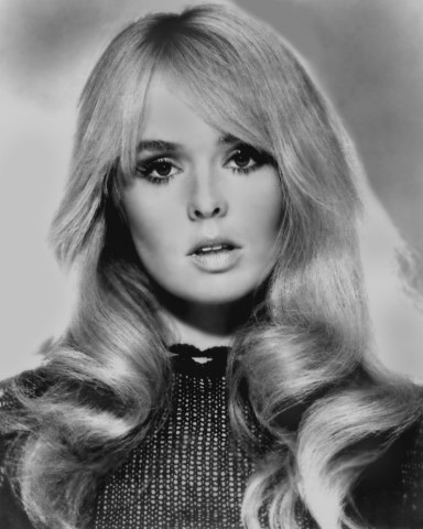 Hill Place Giving Joey Heatherton Her Due As A Musical