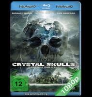 EL SECRETO DE LAS CALAVERAS DE CRISTAL (2014) FULL 1080P HD MKV ESPAÑOL LATINO