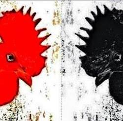 Cuando cante el gallo rojo