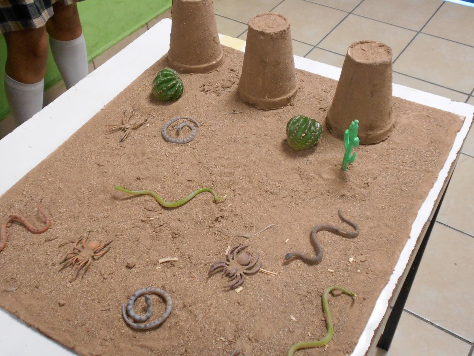 Como Hacer Maqueta Del Desierto Como Hacer Una Maqueta Del Desierto Youtube Como Hacer Un