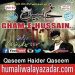 http://www.nohaypk.com/2015/10/qaseem-haider-qaseem-nohay-2016_9.html