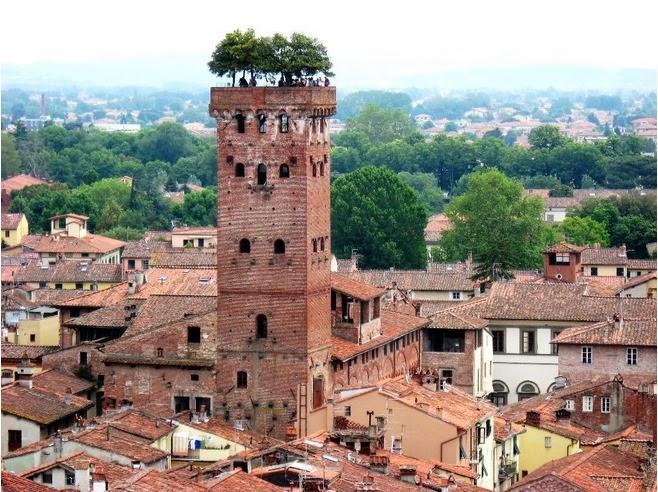 Torre Guinigi en Lucca, Italia