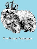 The Pretty Pekingese Pekingese Rescue and Transport