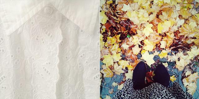 snapshots of my week   1st november