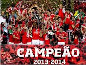 Campeões 2013/2014!