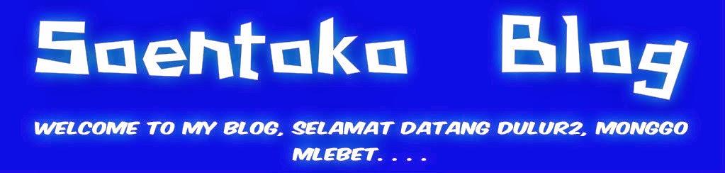 Soentoko Blog