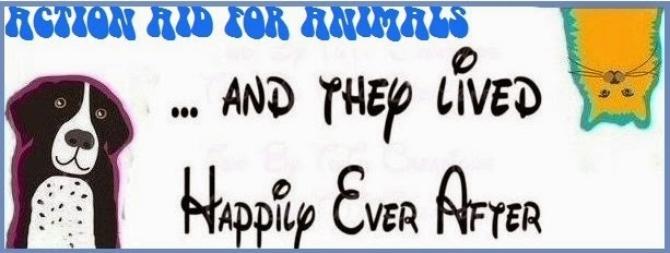 AAFA Happy Ever After