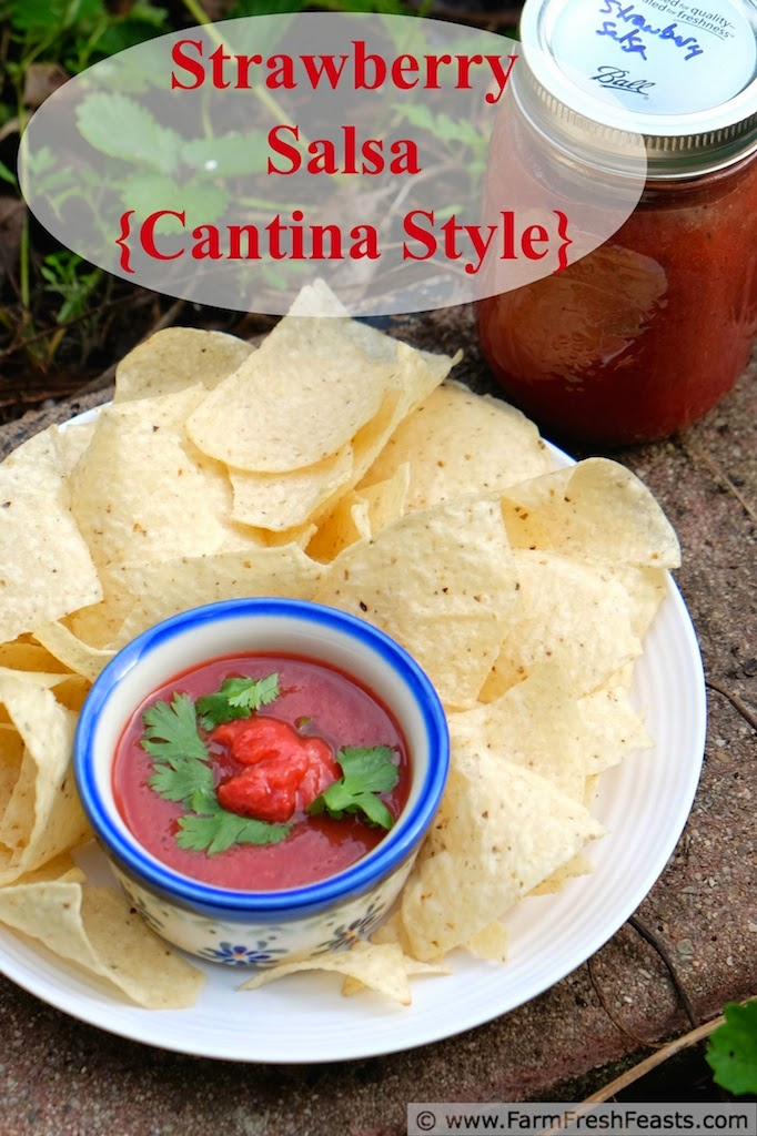 Strawberry Salsa with Hatch Chiles {Cantina Style} | Farm Fresh Feasts