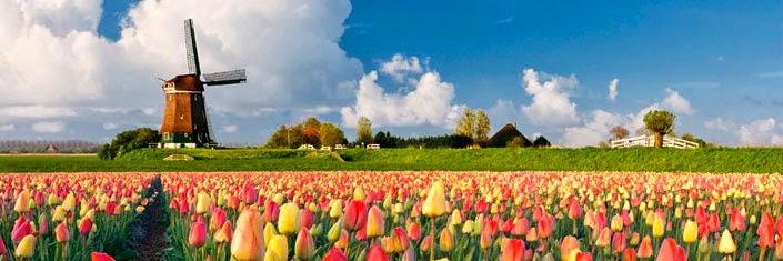 Entre moinhos e tulipas