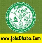 YSR Horticulture University Recruitment, JobsDhaba, Sarkari Naukri