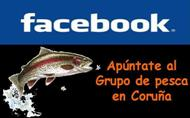 Participa en Facebook